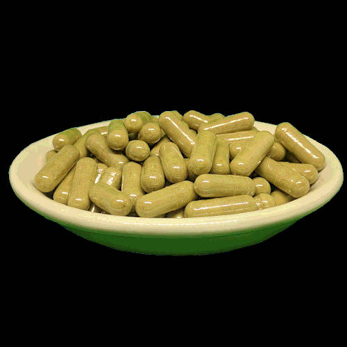 Red Bali Kratom Capsules From Socratic Solutions