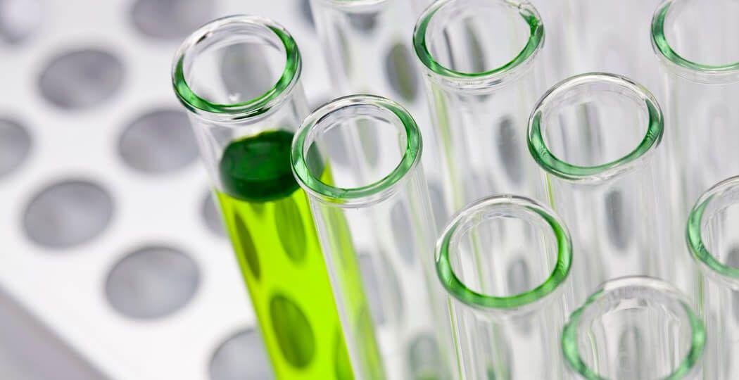 Kratom and the FDA's Lies   Socratic Solutions Kratom Blog